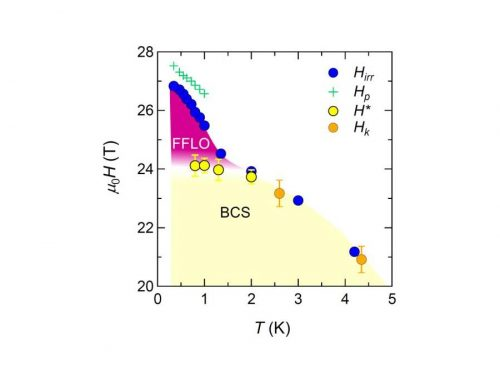EVIDENCE FOR AN EXOTIC HIGH-FIELD SUPERCONDUCTING STATE IN FeSe